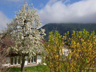 Gemeinde Schwendau